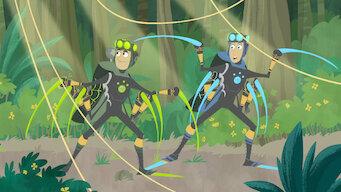 Wild Kratts: Season 2: Secrets of the Spider's Web